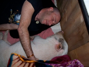 me-and-daryl-hannahs-pig
